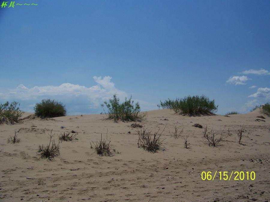 沙漠化.jpg