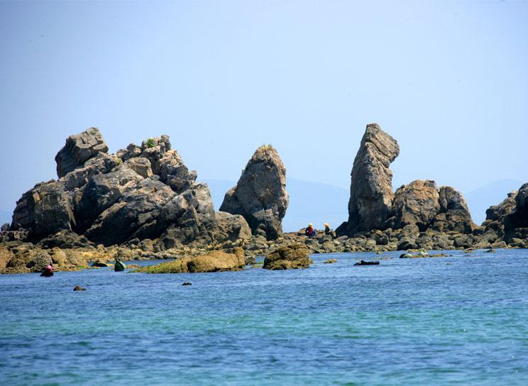 大连滨海国家地质公园:位于辽东半岛最南端,大连市东南沿海地带,总面积216.42Km2,于2005年9月19日,经国土资源部正式批准成立。公园由金石滩、大黑山、南部海岸和旅顺口四大园区组成。金石滩园区是大连滨海国家地质公园核心园区,分为黄金海岸景区、东部景区和城山头景区三大景区。其中东部景区是地质奇石景观最为集中的地段,分成四大主要景群:玫瑰园景群、恐龙园景群、南秀园景群和鳌滩景群。种类丰富的叠层石和三叶虫化石成为研究古地理、古环境及古气候变迁的有利证据。 毛泽东像章纪念馆:该馆是迄今国内外毛主席像章陈列