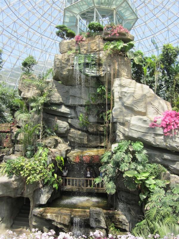 热带雨林馆内部